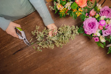 Florist Girl Wrapping Bouquet ...