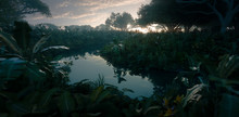 Beautiful Sunset In Jungle Paradise. Dense Rainforest Vegetation And Calm River. 3d Rendering.