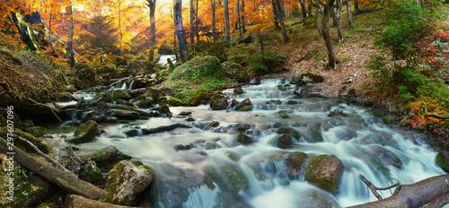 Foto auf Leinwand Wasserfalle forest waterfall