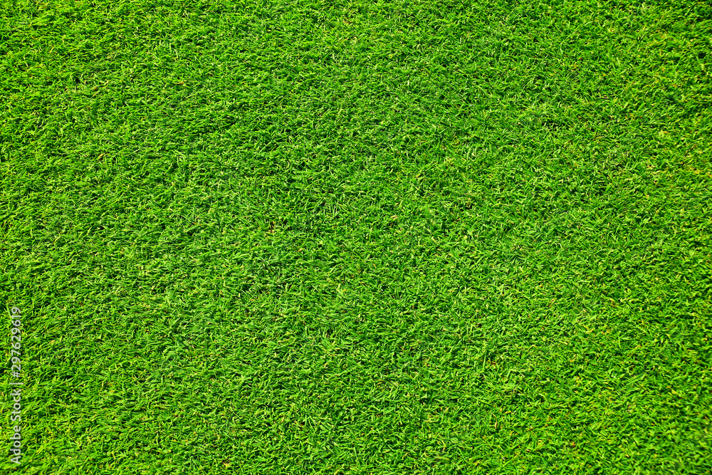 Fototapety, obrazy: Artificial grass background , close up