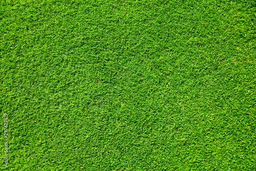 Photo sur Aluminium Herbe Artificial grass background , close up