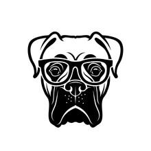 Boxer Dog Wearing Eyeglasses -...