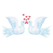 Watercolor White Doves Kiss Lo...