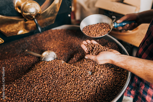 Man's hands holding freshly roasted aromatic coffee beans over a modern coffee roasting machine Fotobehang