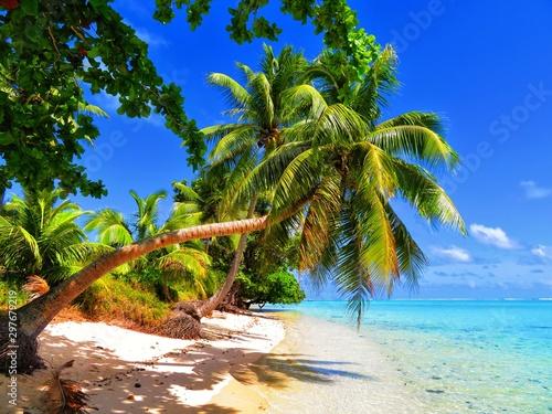 Deurstickers Tropical strand exploring magical island of tahiti