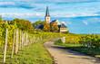 canvas print picture - Hochheim St. Peter und Paul und Weinberge