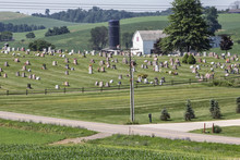 Cemetery, Holmes County, Ohio