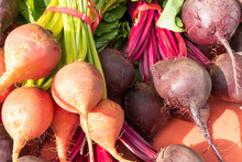 Bunches Of Red And Golden Beet...