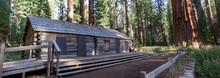 Yosemite Fall 2019
