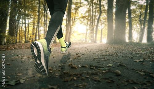 Jogger auf einem Waldweg Fototapete