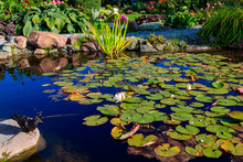 Beautiful Landscaped Garden Po...