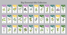 Big Set Of Essential Oil Labels