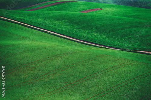 Aluminium Prints Green Rural landscape with road