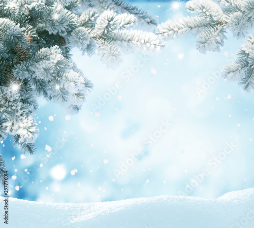 Foto auf Leinwand Licht blau Snowfall in winter forest.Beautiful landscape with snow covered fir trees and snowdrifts.