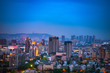 Urban architecture overlooks urban panorama, buildings and roads, Blues,