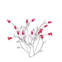 Bush Of Decorative Red Mini Ro...