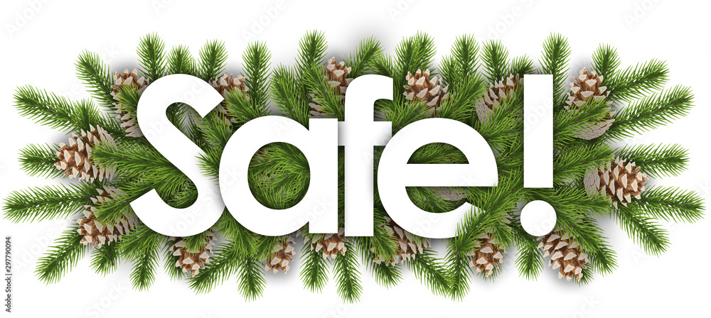 safe in christmas background - pine branchs