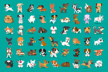 Different Type Of Vector Cartoon Dogs For Design.