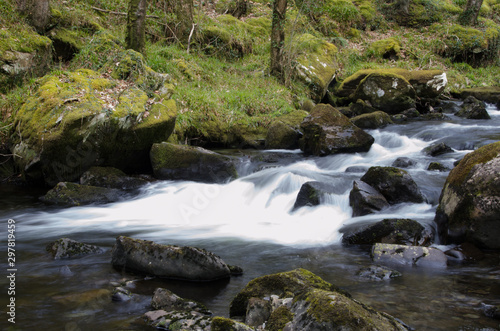 Printed kitchen splashbacks River mountain stream in the forest