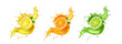 Juice splash lemon, orange, lime set. Citrus splashig fresh collection realistic vector