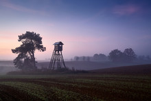 Deer Hunting Pulpit On A Field At Dawn.