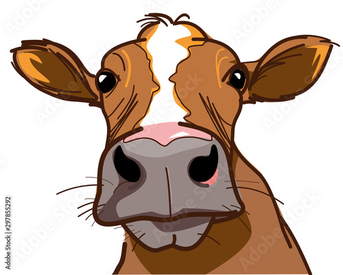 Farm, curious cow looking at you - vector image Fototapete
