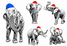 Graphical Set Of Elephants In ...