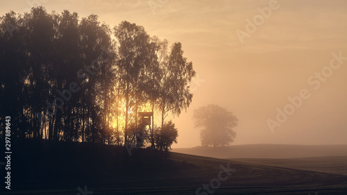 Fototapeta Silhouette of a hunting tower at the edge of the woods at sunrise obraz