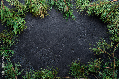 Arbre Photo of Christmas branches of spruce on black background