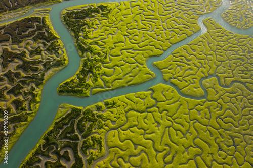 Aerial view, marshlands, Bahia de Cadiz Natural Park Slika na platnu