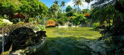 Photo Beautiful botanical garden - Jardin de Deshaies, north west of Basse-Terre, Guad