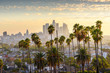 canvas print picture - Cityscape downtown Los Angeles at sunset