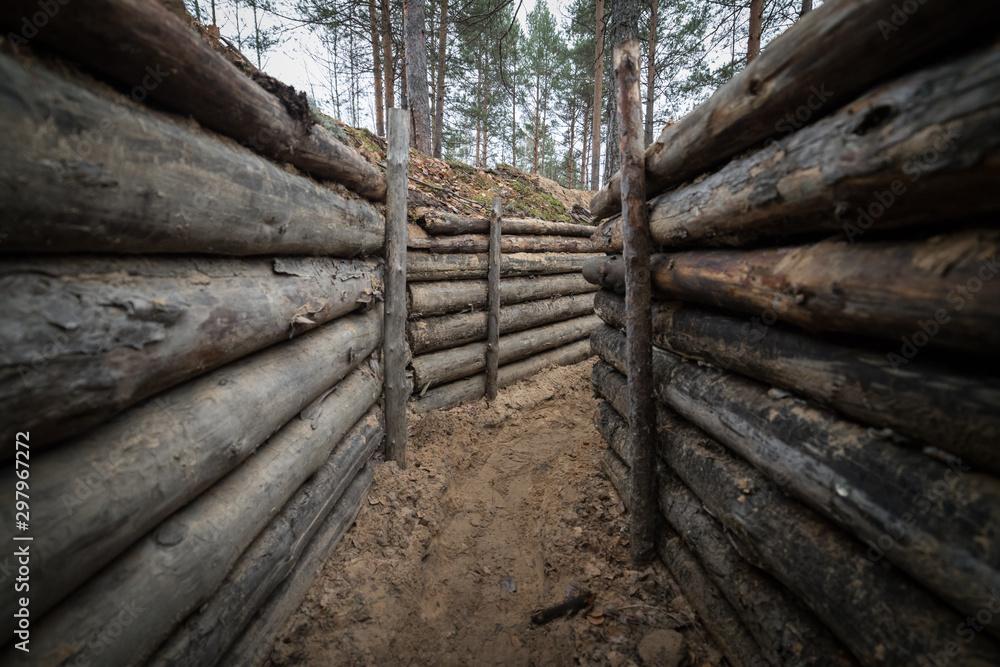 Fototapeta Wooden trench in the forest f World War II