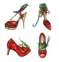 Red Leather Kitten Heel Shoes With Green European Mantis And Green Lizard On It, Heel Shoes With Green Hummingbird Sitting In Nest Inside And Other One On Stilettos Shoes, Watercolor Collection