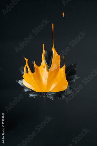 black maple leaf with dripping orange paint on black background. Art and concept poster for Halloween. Minimal nature still life concept.