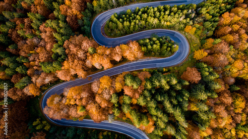 Aerial view of forest road in beautiful autumn .at sunset. Serpentine asphalt road details with colourful landscape with heavy traffic and yellow trees - 298002857