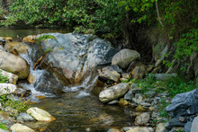Mountain Stream In A Forest On...