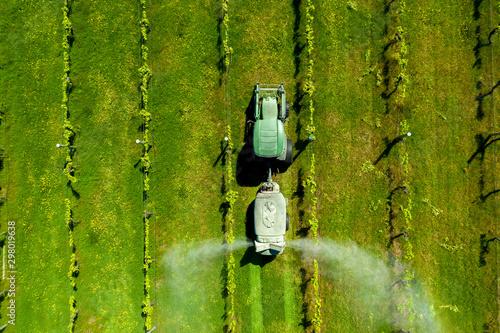 Fotomural  Vineyard Spraying