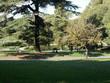 Jesienny relaks w rzymskich ogrodach , Villa Borghese. Italia