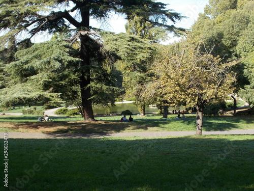 Fototapeta Jesienny relaks w rzymskich ogrodach , Villa Borghese. Italia obraz