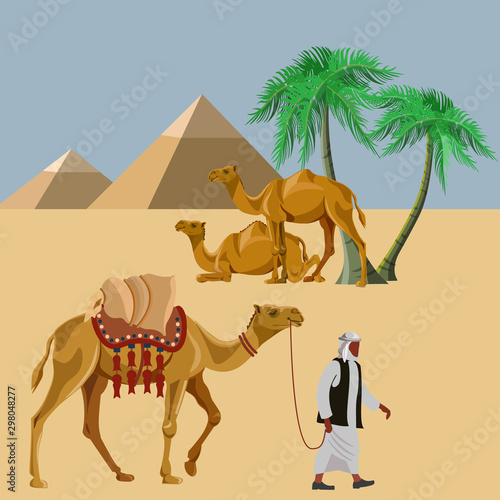 Valokuvatapetti Arab man with a camel in the desert