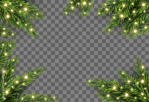 Fotografija  Christmas tree decor with fir branches and lights on transparent background, vec