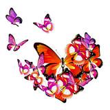 butterfly367