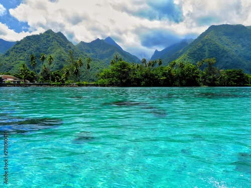 Fototapeta exploring tropical island of tahiti