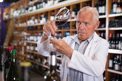 Fotomural  Sommelier tasting wines in winery