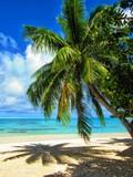 Fototapeta Krajobraz - exploring tropical island paradise