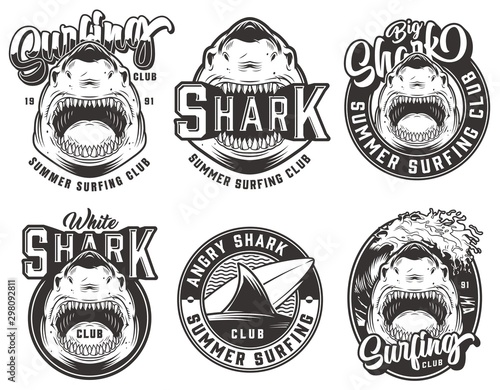 Vintage summer surfing club labels set Canvas Print