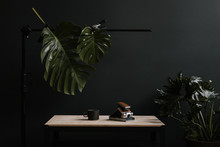 Vintage Camera And Coffee Mug On Desk With Big Leaves And Dark Background