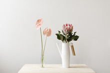 Vase Of Light Pink Flowers And Watering Can With Large Flower