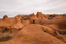 Solitude In The Desert